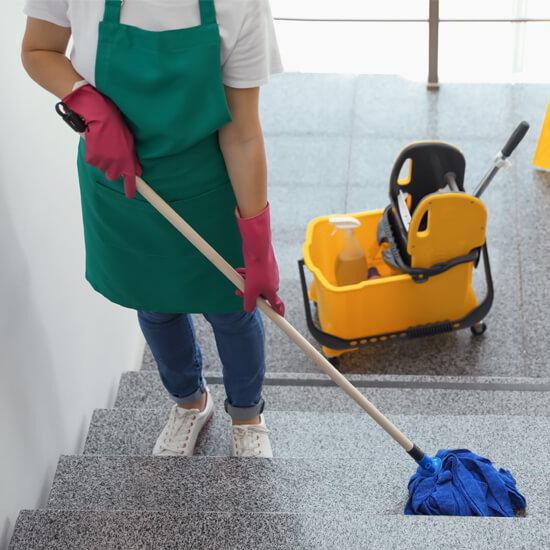 curatarea intrarilor sofia curatator